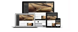 jgs-web-design-and-ecommerce